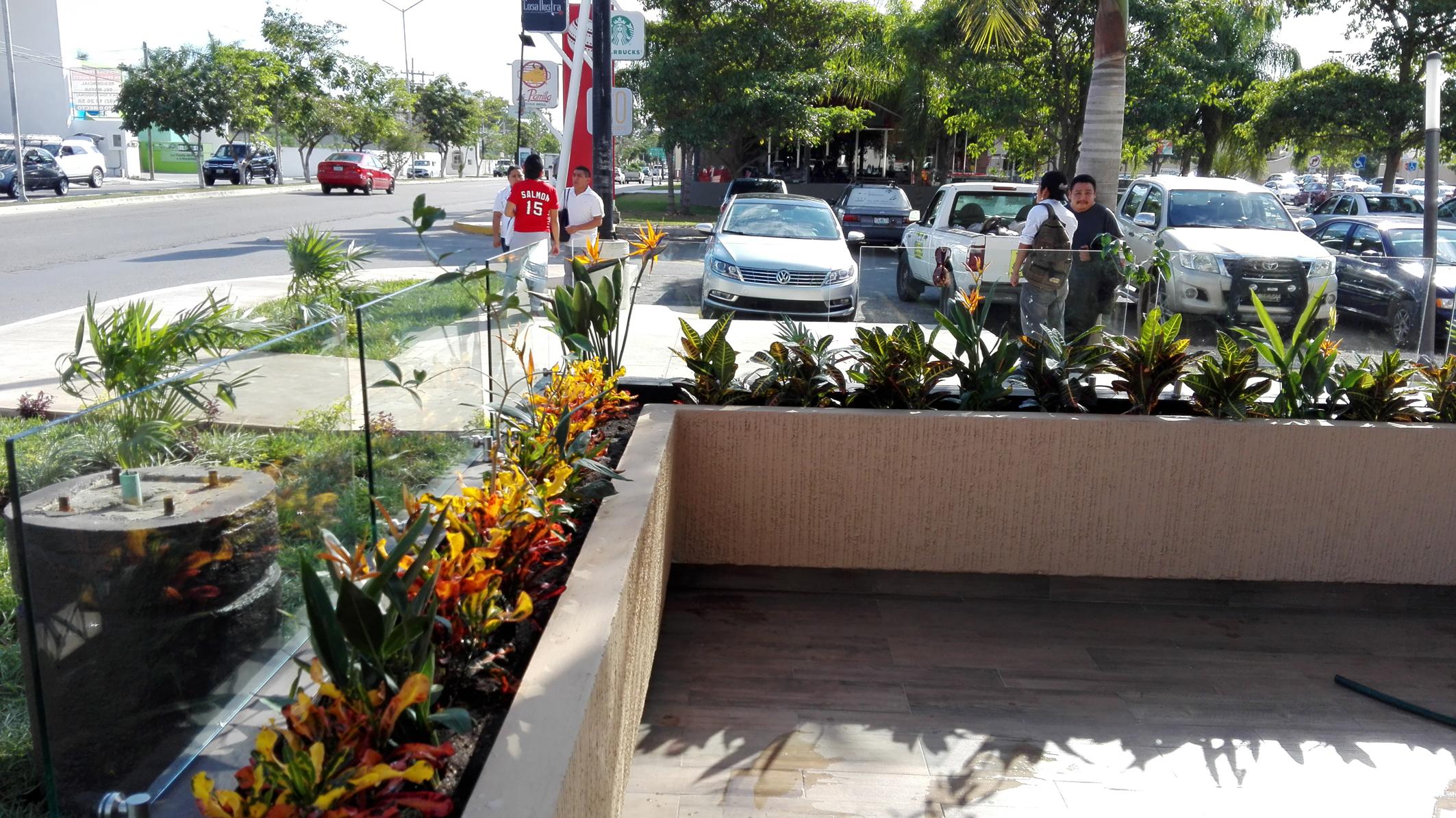 Servicio profesional de jardineria en m rida yucat n for Servicio de jardineria